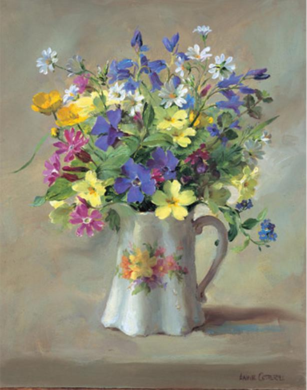 Anne Cotterill34 (11)