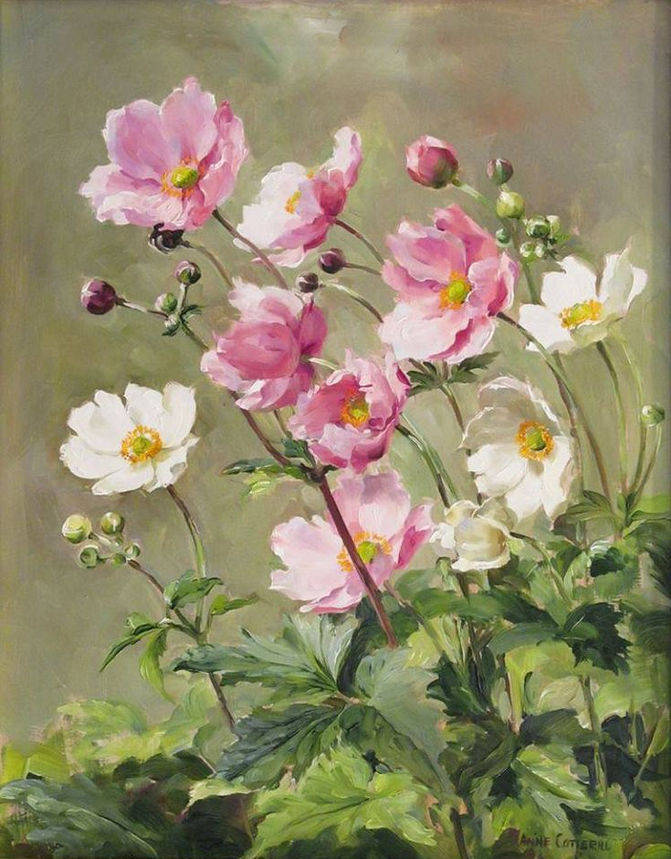 Anne Cotterill34 (16)