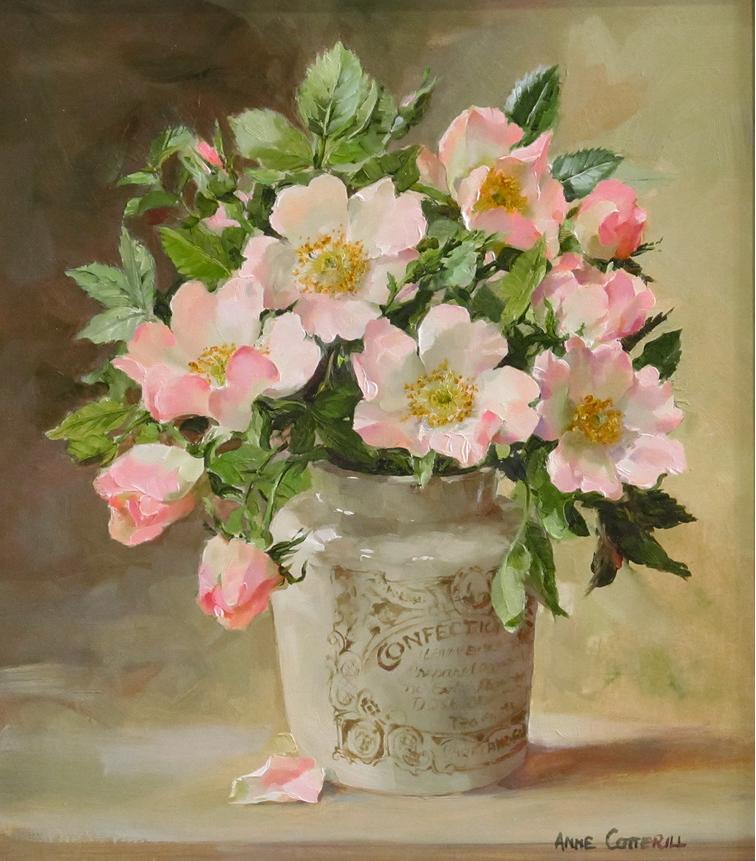Anne Cotterill34 (17)