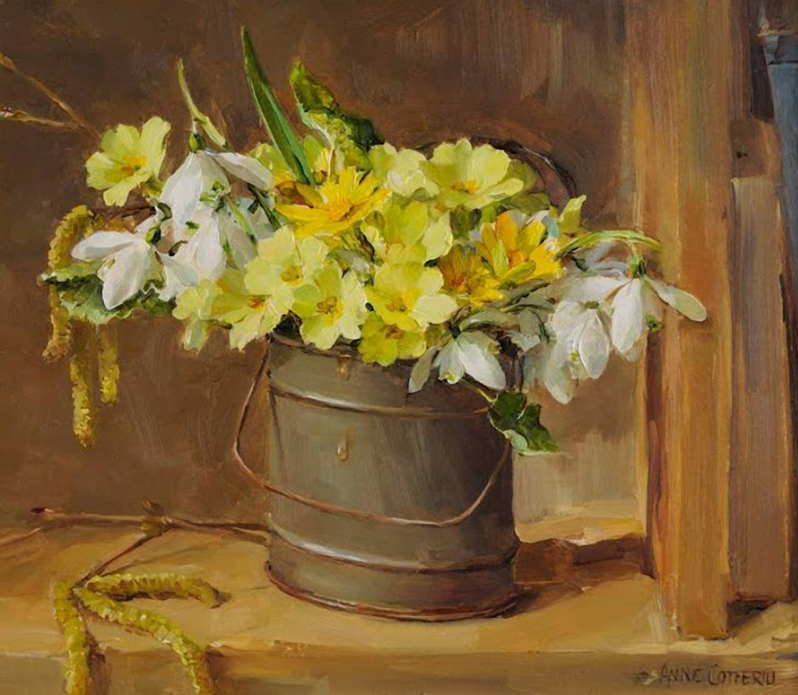 Anne Cotterill34 (18)
