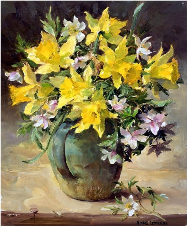 Anne Cotterill34 (27)