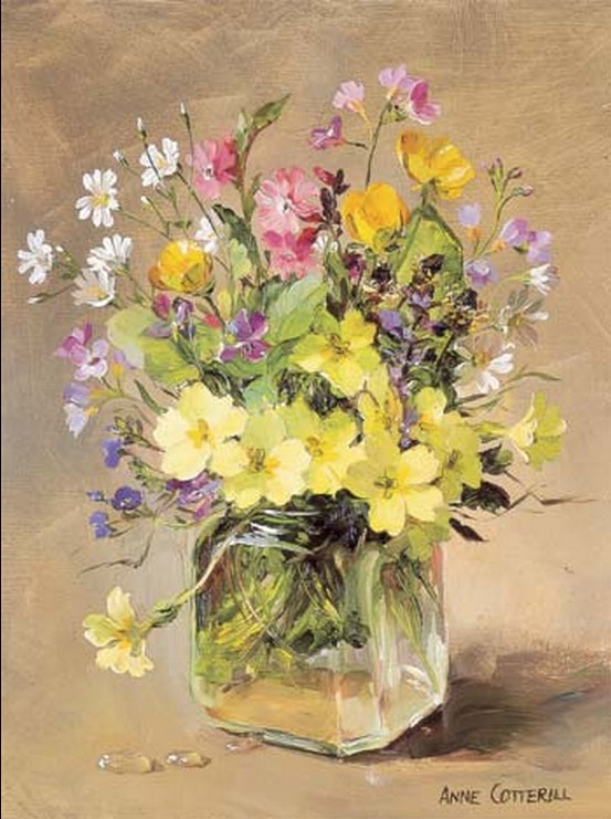 Anne Cotterill34 (28)