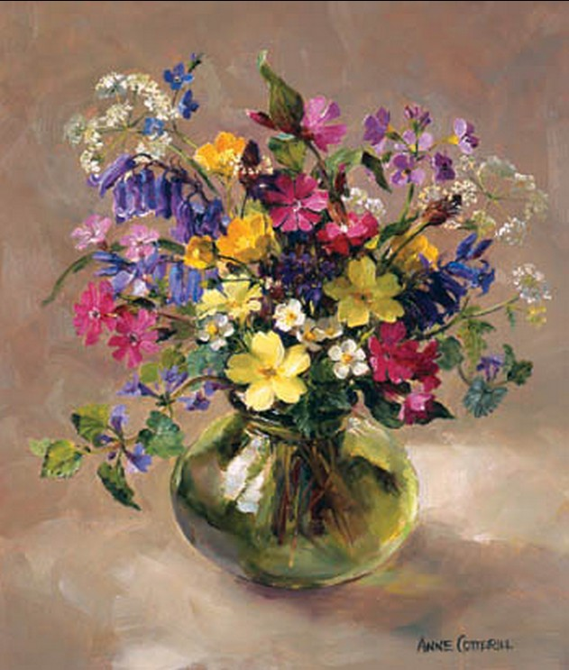 Anne Cotterill34 (29)