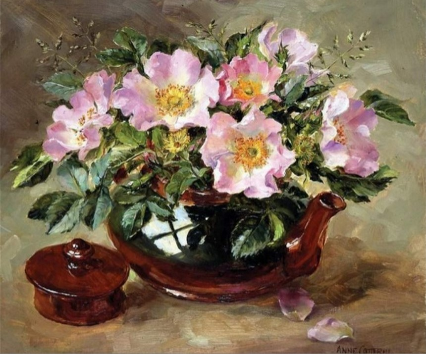 Anne Cotterill34 (30)