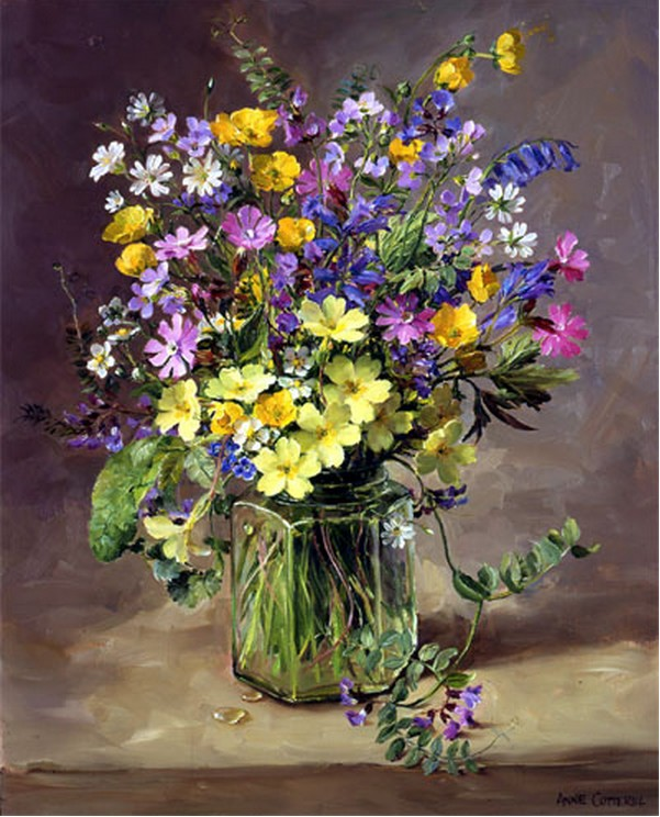 Anne Cotterill34 (37)