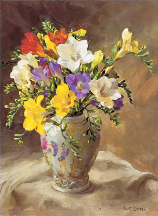 Anne Cotterill34 (4)