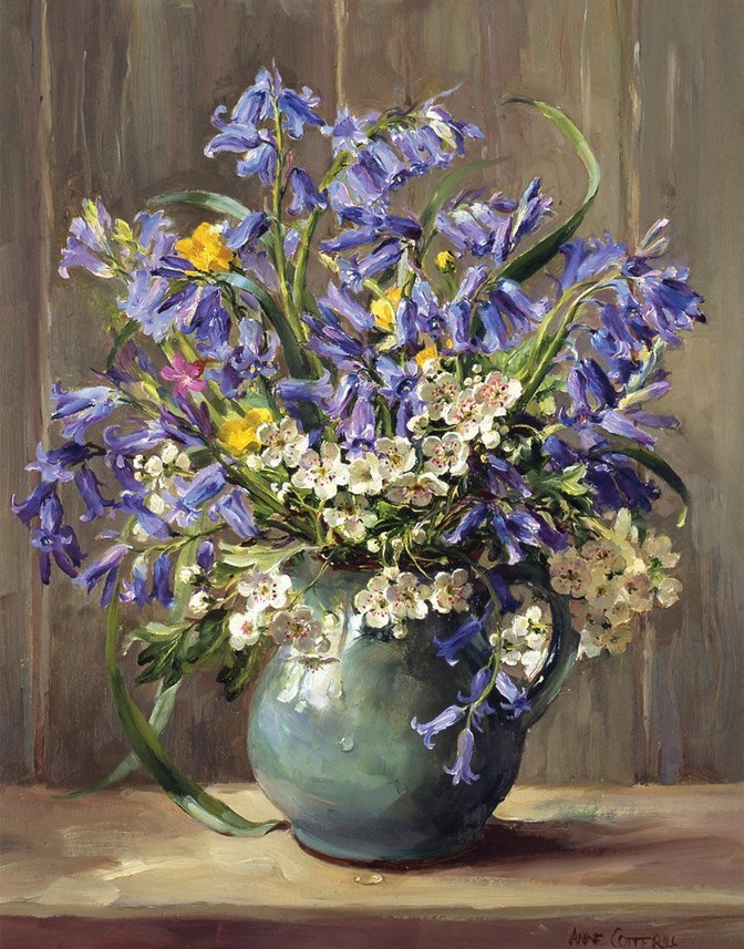 Anne Cotterill34 (40)