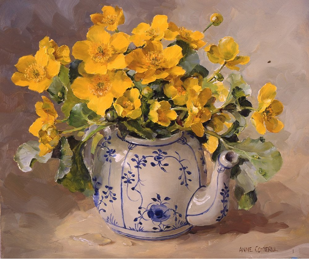 Anne Cotterill34 (41)