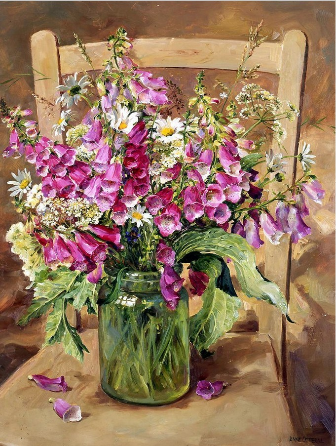 Anne Cotterill34 (42)