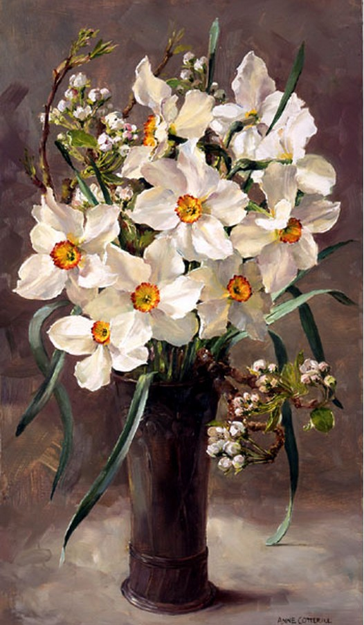 Anne Cotterill34 (45)