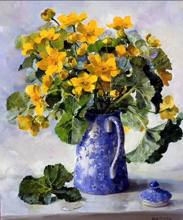Anne Cotterill34 (6)
