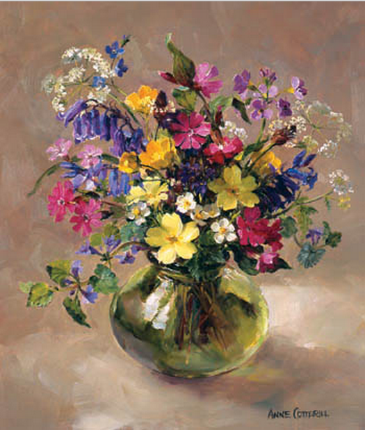 Anne Cotterill34 (8)