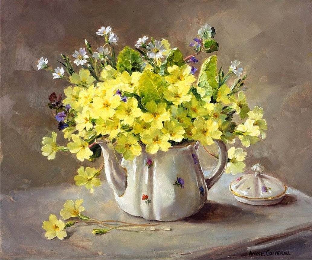 Anne Cotterill34