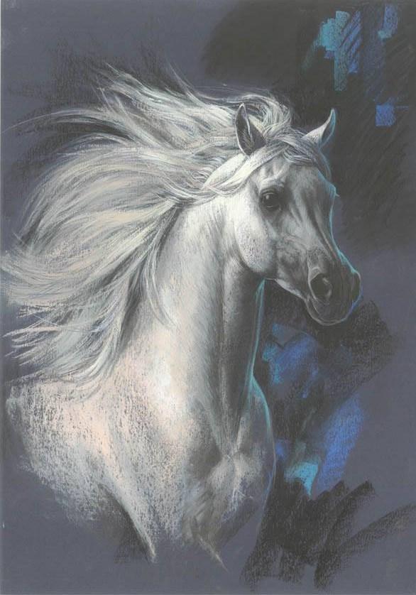 zorina-baldescu67