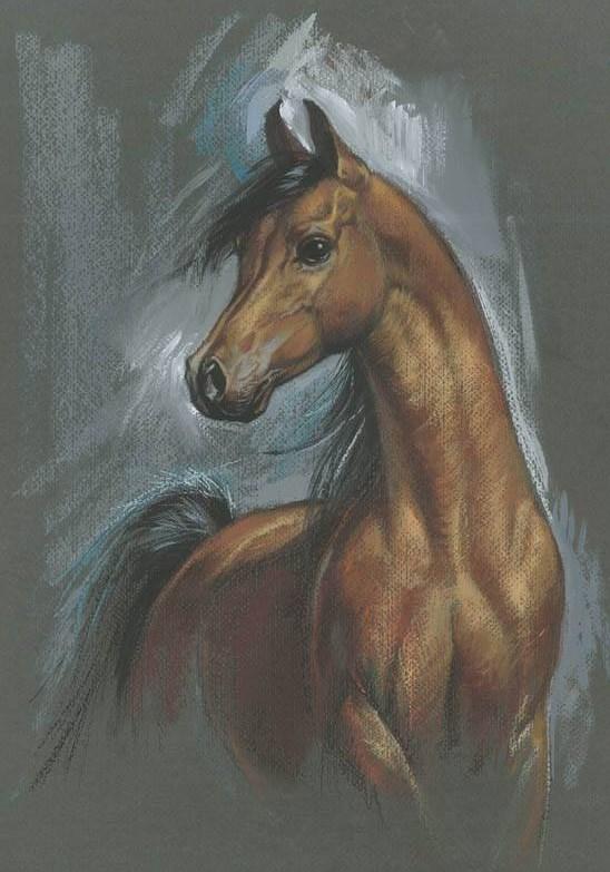 zorina-baldescu72